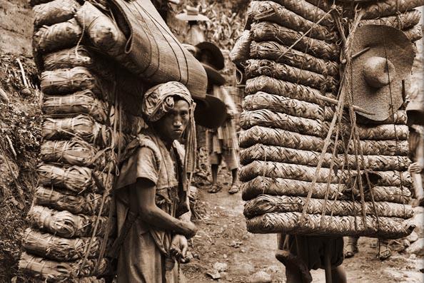 Porteadores de Te - Cha Ma Dao: The Tea Horse Road