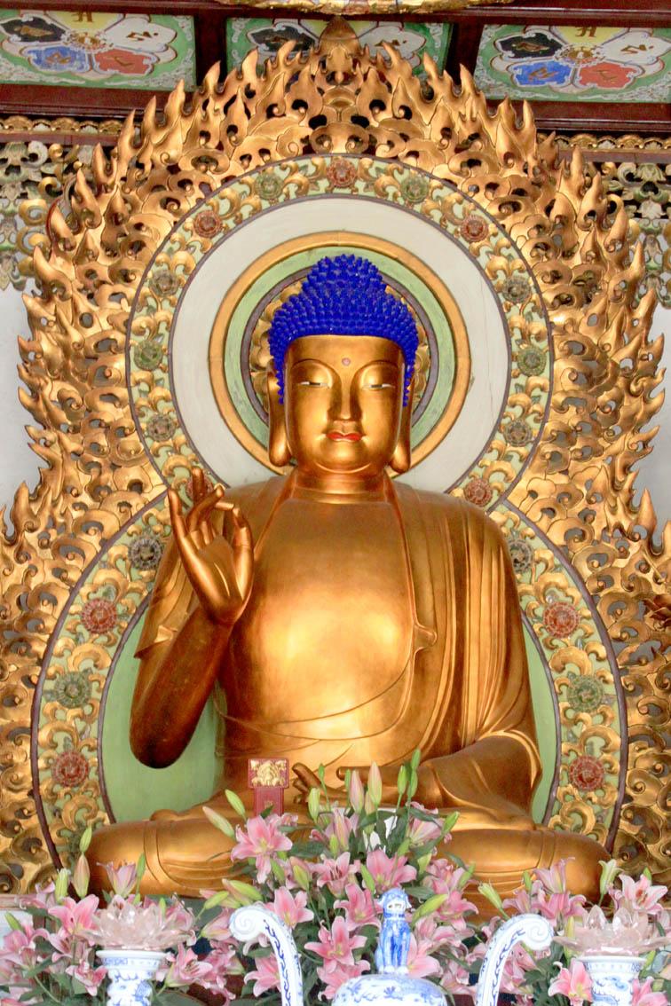 Buda Sakyamuni - Life of the Buddha