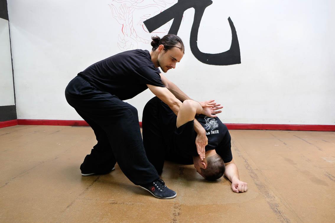 qin na seh ying kuen - The Snake Form of Choy Li Fut