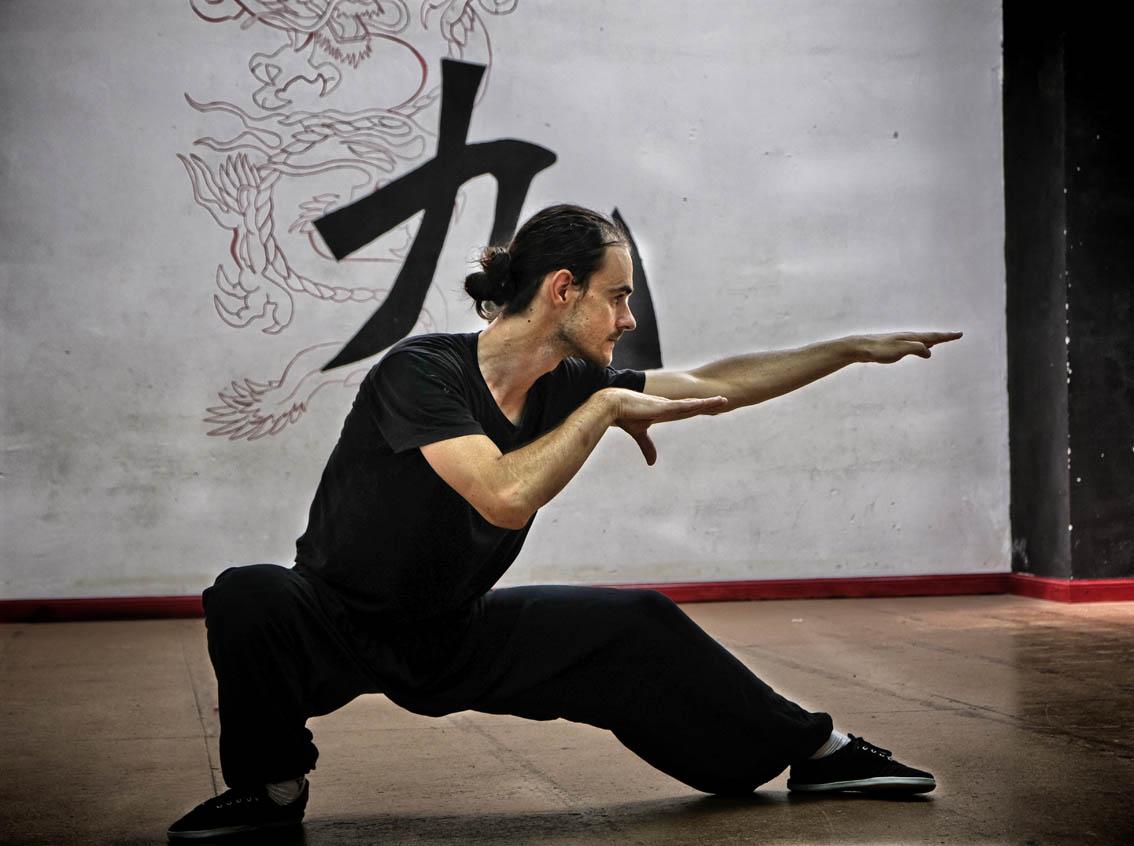 seh ying kuen - The Snake Form of Choy Li Fut