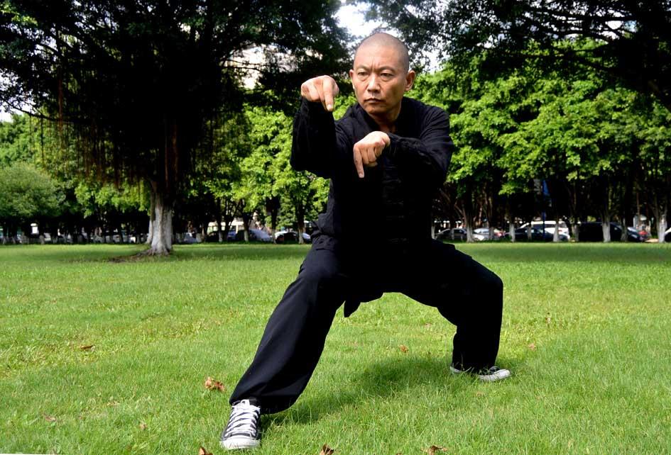 Sifu Liu Shi Qing. Tang Lang Quan Mantis Kung Fu