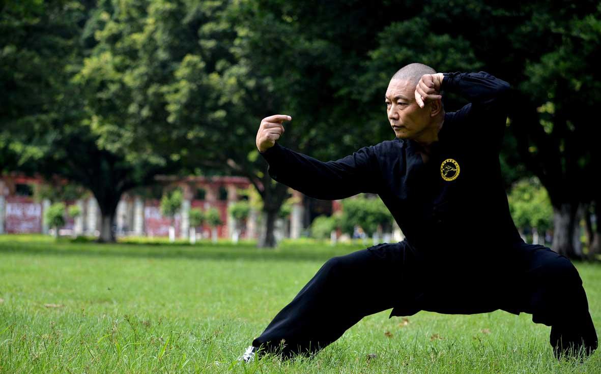 Tang Lang Quan Maestro Liu - Tang Lang Quan, Northern Praying Mantis
