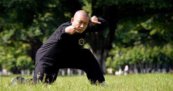 Tang Lang Quan, Mantis Kung Fu, estilo de la mantis
