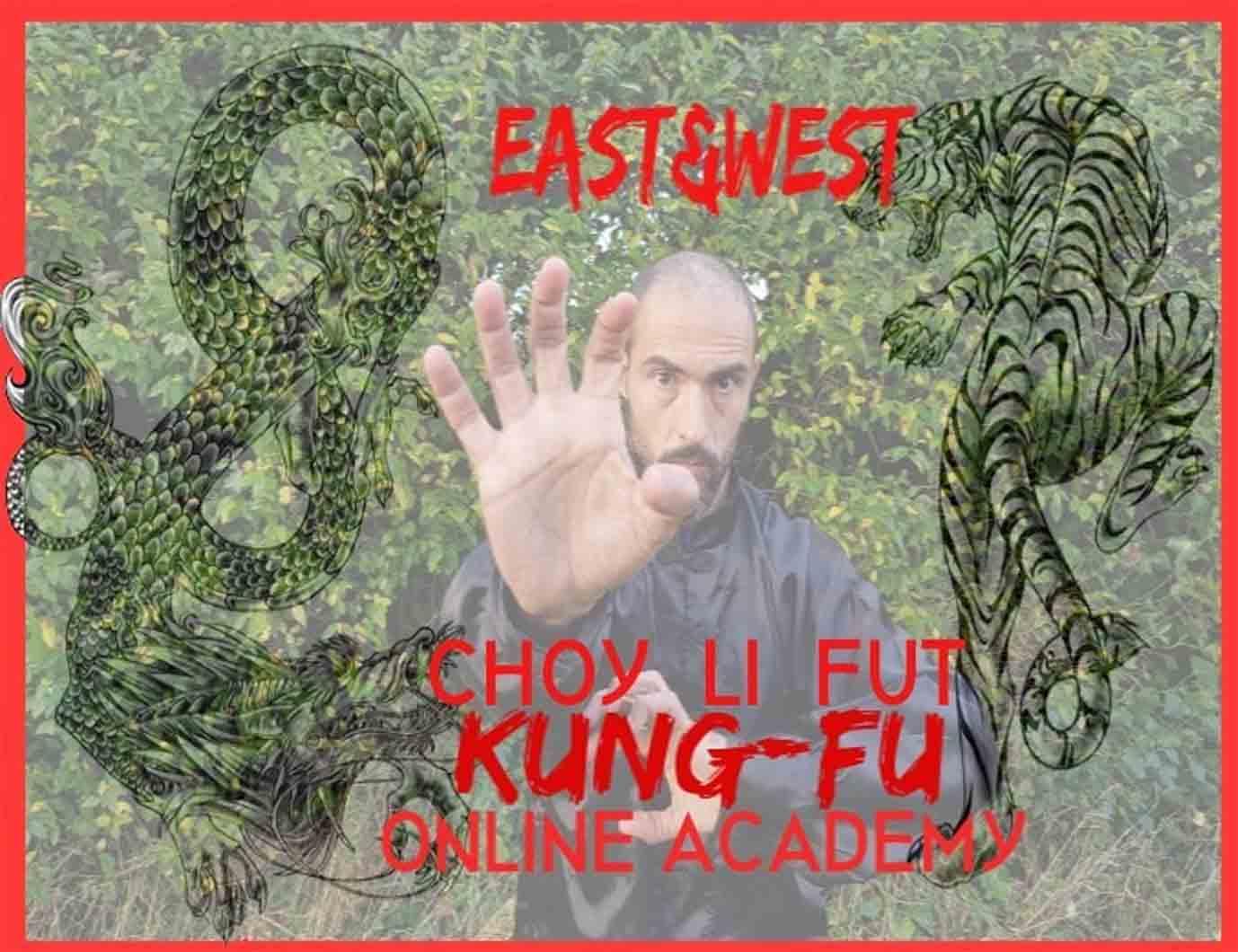 Acedemia de Kung Fu en Línea, Aprender Kung Fu, Online