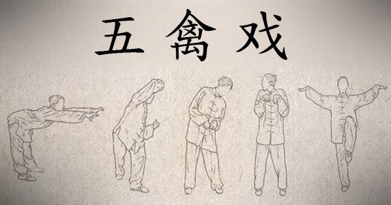 Wu qin xi, cinco animales qigong, five animals qigong,