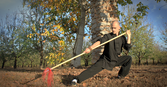 Lanza, Spear, Chinese weapons, armas chinas, Kung fu, Choy Li Fut, Choy Lee Fut