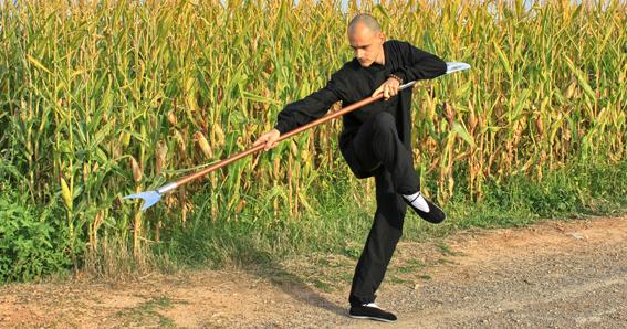 Pala de Monje, Monk's Spade, Choy Li Fut, Kung Fu Weapons, Armas de Kung Fu