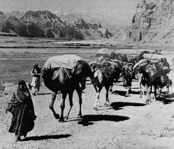 Caravana Ruta de la Seda - El Reino Perdido de Loulan