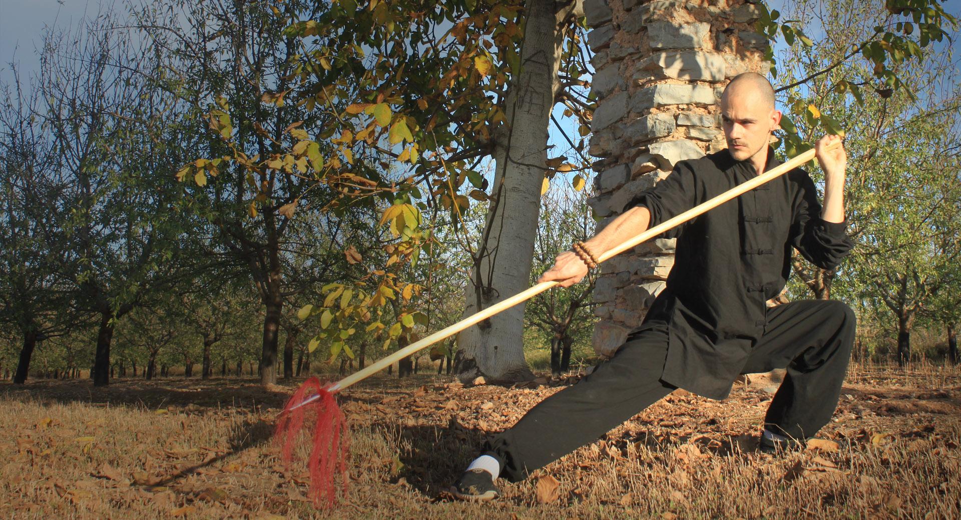 Clases de Kung Fu Choy Li Fut Zaragoza - Disciplinas