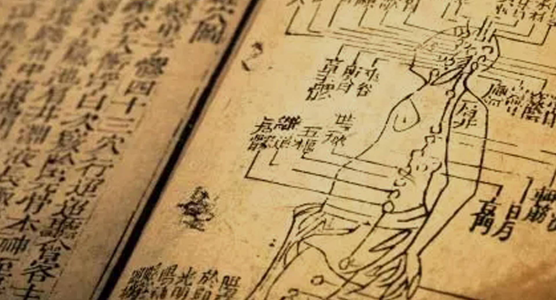 Qi Gong Zhanzhuang Zaragoza - Disciplinas