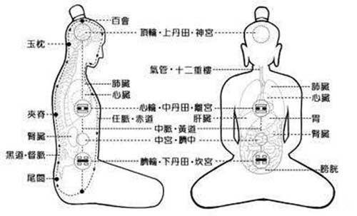 Los Tres Dantian - The Dantian and the Taoist Internal Alchemy